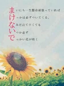 image4_17.JPG