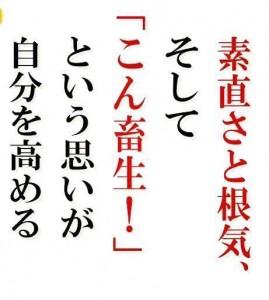 image16_10.JPG