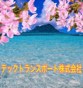 image7_16.jpeg