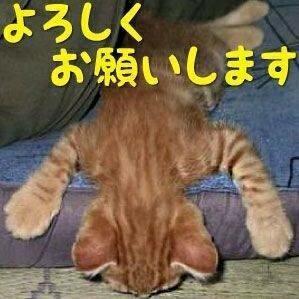 image14_9.jpeg