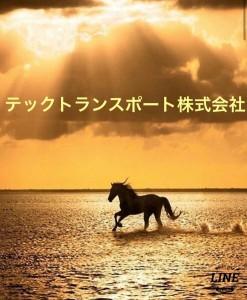image11_3.jpeg